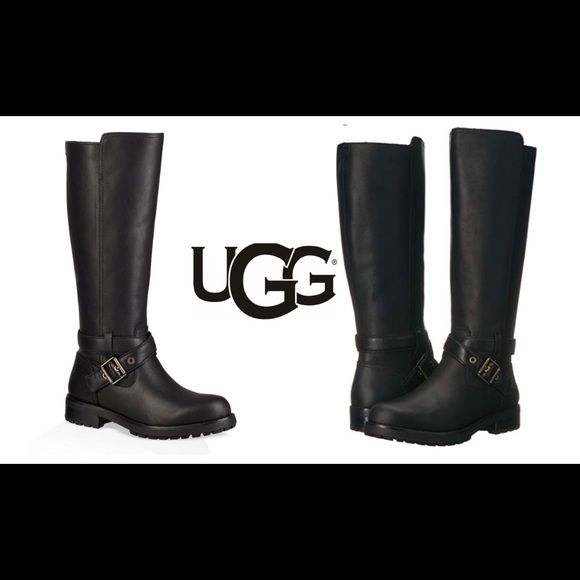 7074e9ec864 UGG Water Resistant Harrington Heel Riding Boots NWT